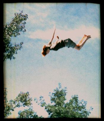 Falling+Trees